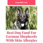 Best Dog Food For German Shepherds With itching skin
