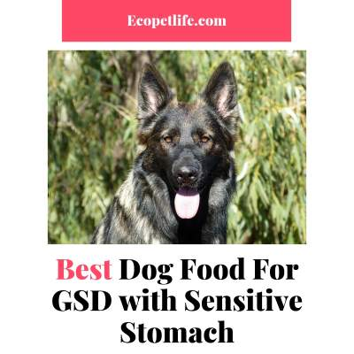 Food for GSD with diarrhea