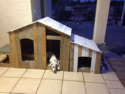 easy DIY pallet dog house