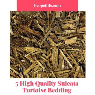 5 High Quality Sulcata Tortoise Bedding