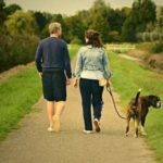 home remedy for dog uti