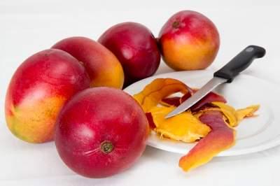Can parakeets Eat Mango