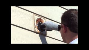 how to remove bird nest from bathroom vent