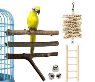Natural Wood Bird Perches