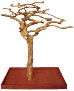 Single Java Wood Tree Play Stand
