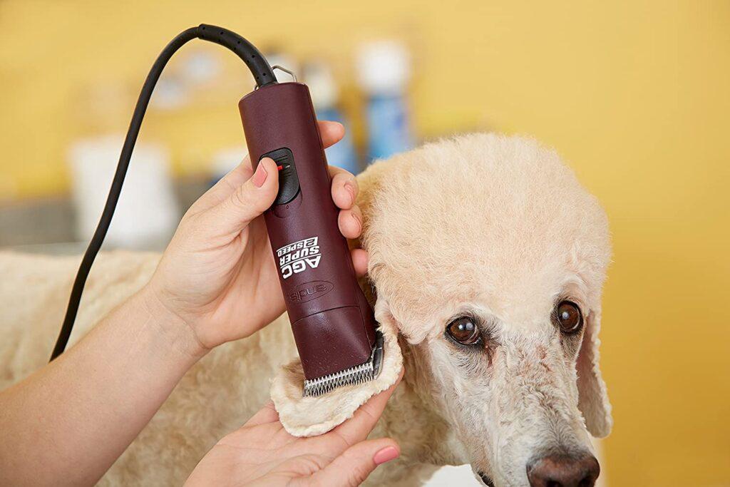 Ultra edge dog clipper
